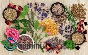 ضدعفونی کردن فضای خانه با داروهای گیاهی