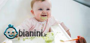 طرز تهیه غذا برای نوزاد 7 تا 9 ماهه
