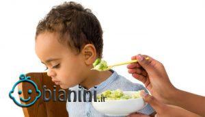 کلید های رفتار با کودک بد غذا