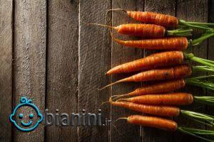 روش نگهداری و فریزر کردن هویج تازه به مدت یکسال